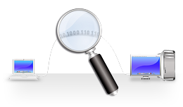 What is Information Security Audit?