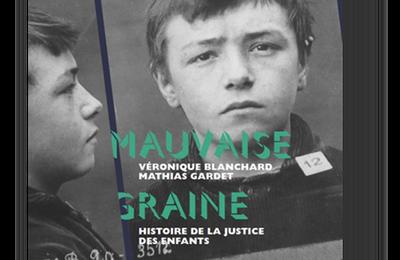 Mauvaise graine. Deux siècles d'histoire de la justice des enfants en librairie le 13 septembre