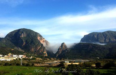 Sidi Maarouf