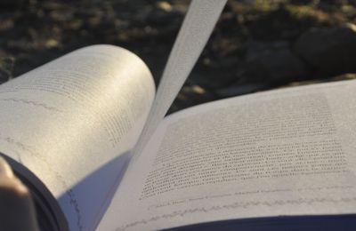 """A la découverte du livre """"l'effet guérisseur de l'arbre"""" suite"""