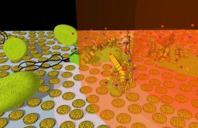 Come uccidere batteri e non solo con nanodischi d'oro e la luce
