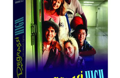 """Le coffret """"Degrassi High : Les Années Collège"""" (période lycée) en exclu et vente direct chez l'éditeur RV FILMS !"""