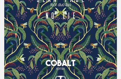 Sean Paul Ft. Dua Lipa - No Lie (Cobalt Remix)