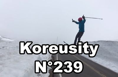 Compilation Koreusity n°239