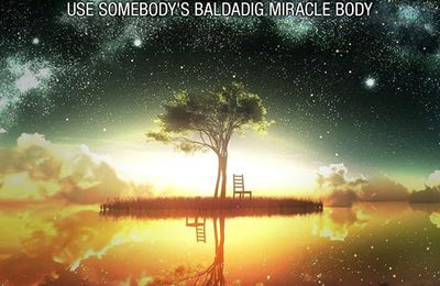DJ Schmolli - Use Somebody's Baldadig Miracle Body