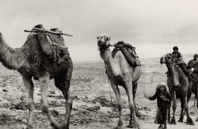 La nouvelle Route de la soie passera par la Syrie . Par Pepe Escobar.
