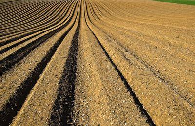 Il est urgent de sauver les sols agricoles