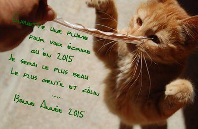 Mes cartes de voeux chaton pour 2015