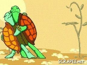 Un amour de tortue - Roald Dahi