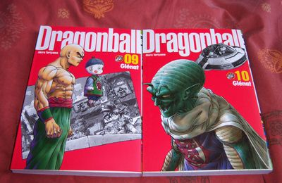 Dragon Ball Perfect édition tomes 09 & 10