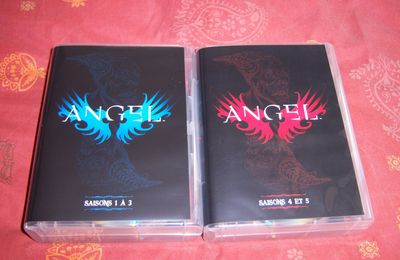 Angel : Saison 1