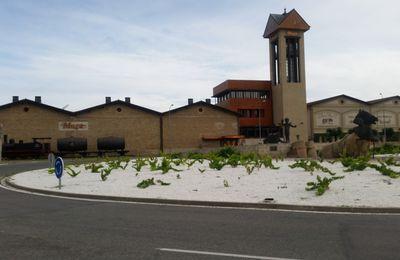 Visite de la Bodega Muga, Rioja.