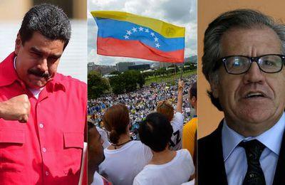 Por qué el régimen de Nicolás Maduro no quiere a la OEA en la mesa de diálogo