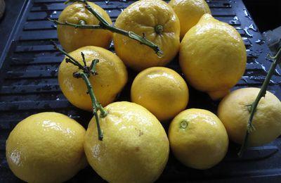 Oranges ou citrons???