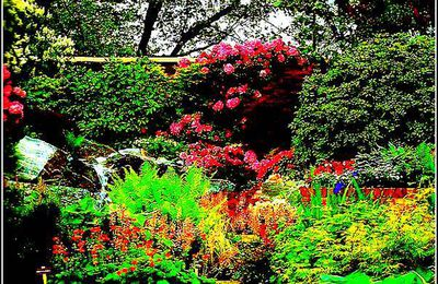 Tubes gifs jardin