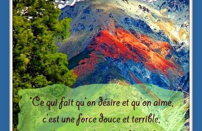 "Citation ""force"" de Anatole France"