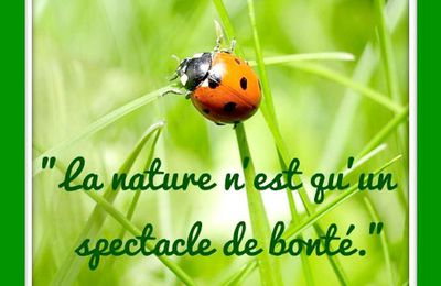 "Citation ""nature"" d'Arthur Rimbaud (1854-1891)"