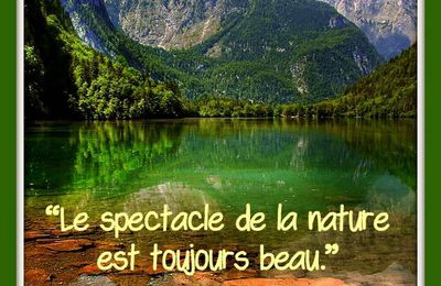 "Citation ""nature"" d'Aristote"