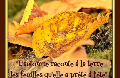 "Citation ""automne"""
