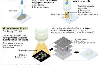 L'ART DE MIRAR PEL MICROSCOPI (II)