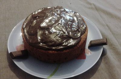 gâteau aux pépites de chocolat et crème fraiche 18 cm