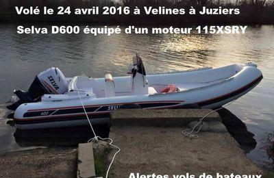 ALERTE VOL DE SEMI-RIGIDE SELVA D600 moteur 115XSR