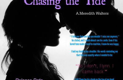 Flynn Friday Teaser for Chasing The Tide by A. Meredith Walters