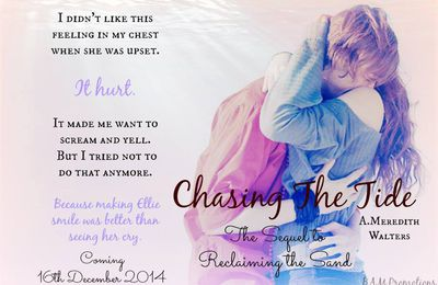 Chasing the Tide by A. Meredith Walters- My Review