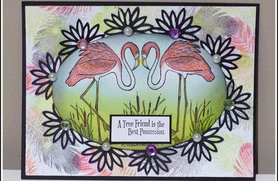 CARTE FLAMANTS ROSES