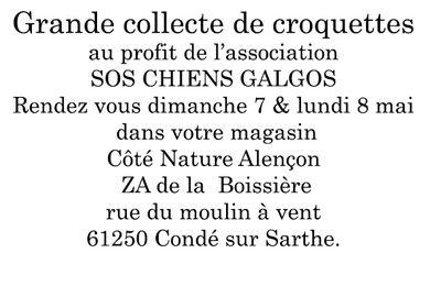 """Animation association """"sos chiens galgos"""" chez  Côté Nature d' Alencon 61000 le 7 et mars 2017"""