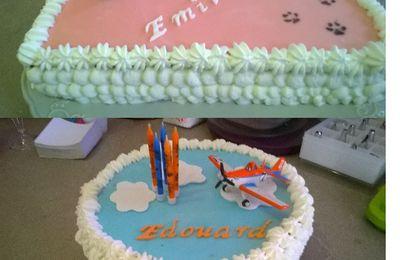 Gâteaux planes et chats!