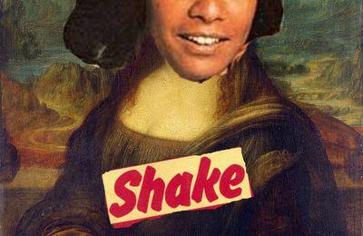 ART MODERNE : SHAKE JOCONDE