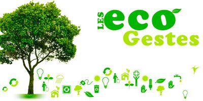 Les écogestes : les gestes pour la planète