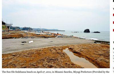 Miyagi beach reopens after 6 years