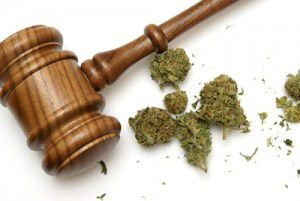 U.S.: Federal Court To Hear Evidence On Whether Marijuana Is Misclassified As Dangerous Drug - See more at: http://hemp.org/news/node/4201#sthash.FcMc8h5w.dpuf