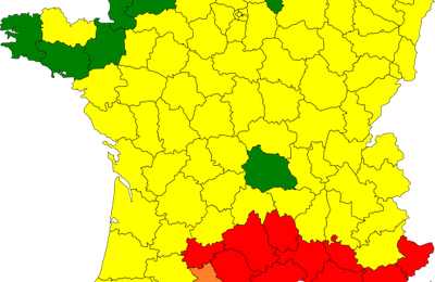 Carte de France des pollens : le retour des allergies