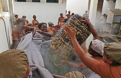 Vanille de Madagascar: la qualité inquiète plus que la quantité
