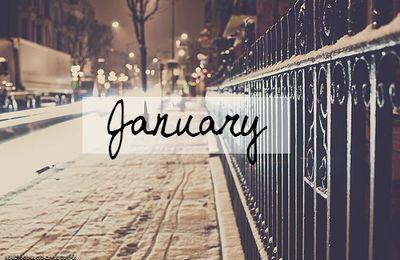 Mes favoris janvier 2015 !