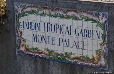 Jardin Tropical do Monte Palace