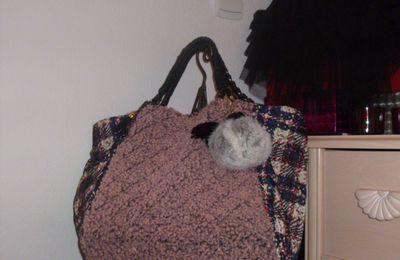 Un sac tendance pour les femmes originales....