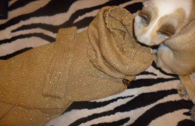 Tuto pull doré femme