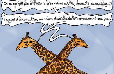 Pourquoi les girafes sont menacées d'extinction?