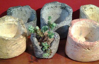 Plantes en l vitation co sculptures cr ations v g talis es for Plante en levitation