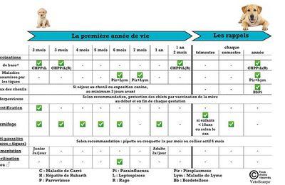 France: le nouveau calendrier vaccinal est arrivé !