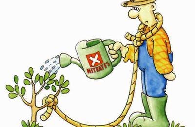 La Commission européenne autorise de nouveau… des pesticides interdits