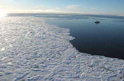 Bruit mystérieux en Arctique : l'enquête continue