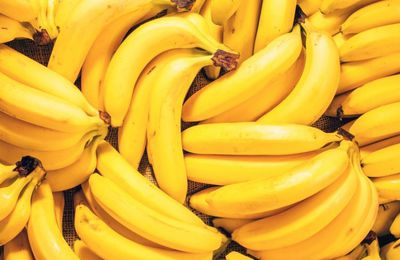 La production mondiale de bananes menacée