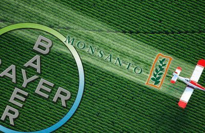 Prise de contrôle du cannabis par Bayer et Monsanto ? Voici ce que vous devez savoir…