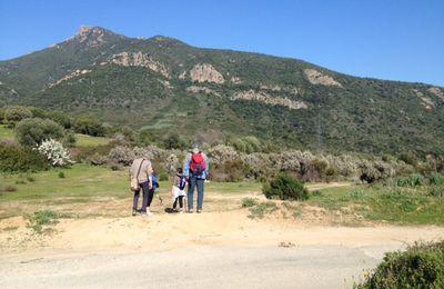 Balade du vendredi : sur les hauteurs de Bastelicaccia