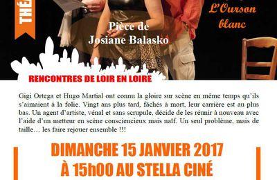 Un Grand Cri d'Amour au Stella Ciné de BAUGÉ-EN-ANJOU le DIMANCHE 15 JANVIER 2017 !
